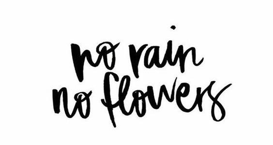 no rain, no flowers, no worries, no stress