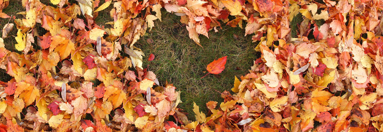 Is Your Home Ready For Autumn?
